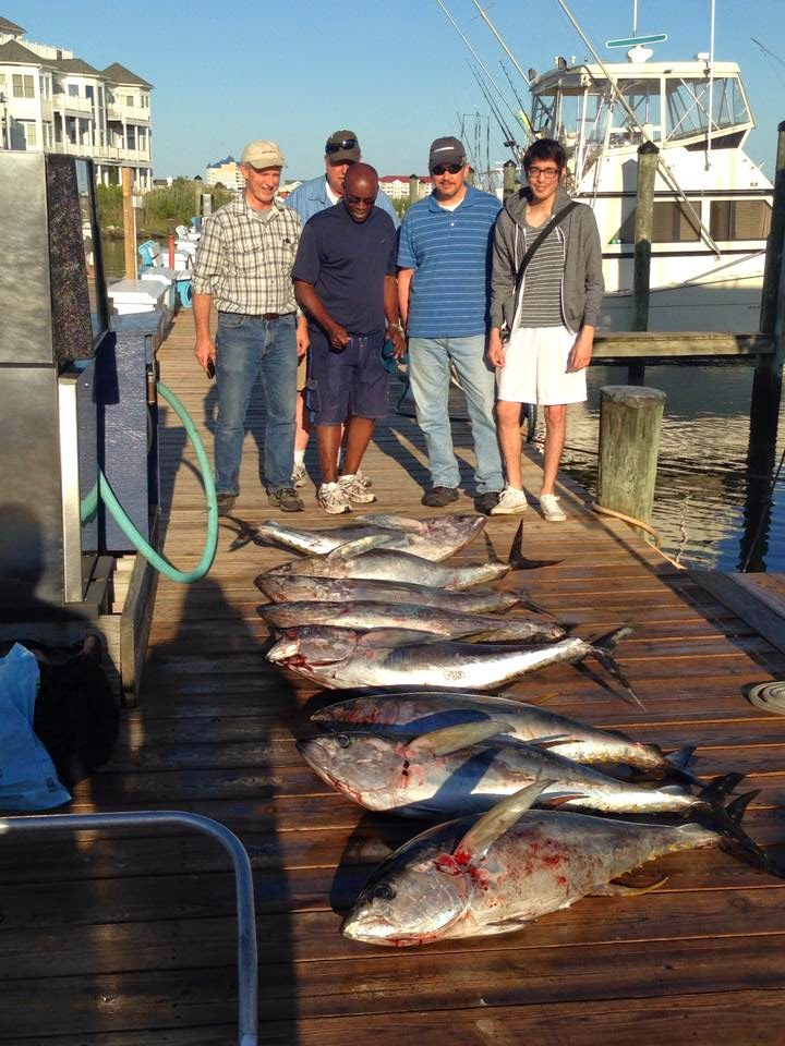 June 20 2014 daily reports news ocean city fishing center for Ocean city fishing center