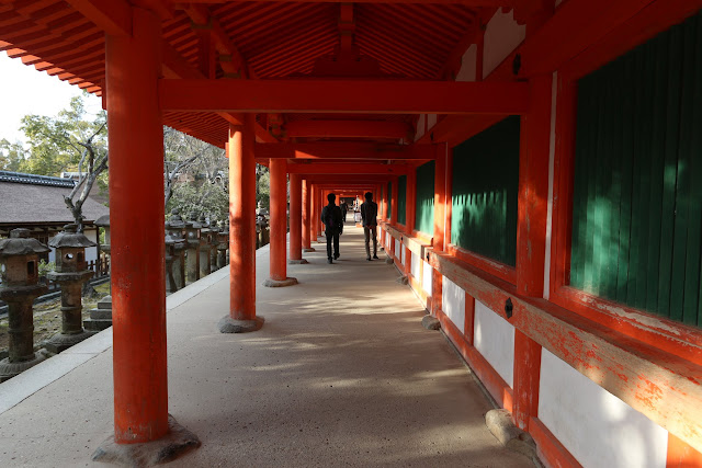 Feeling calm while walking at Kasuga Taisha Shrine Temple in Nara Park, Japan