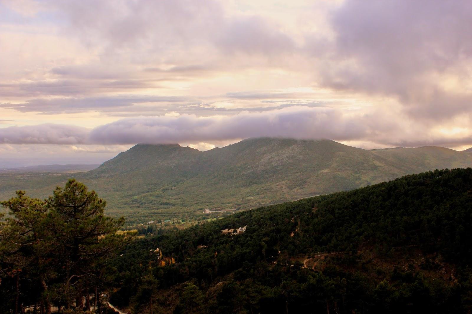 Pico de las Machotas. Bosque de Abantos