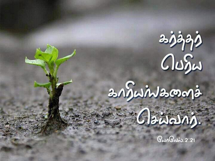 tamil christian wallpapers tamil bible verse   god will do big things