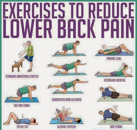 Exercise to reduce Lower back pain.