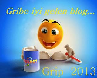 Gribe iyi gelen kişisel blog