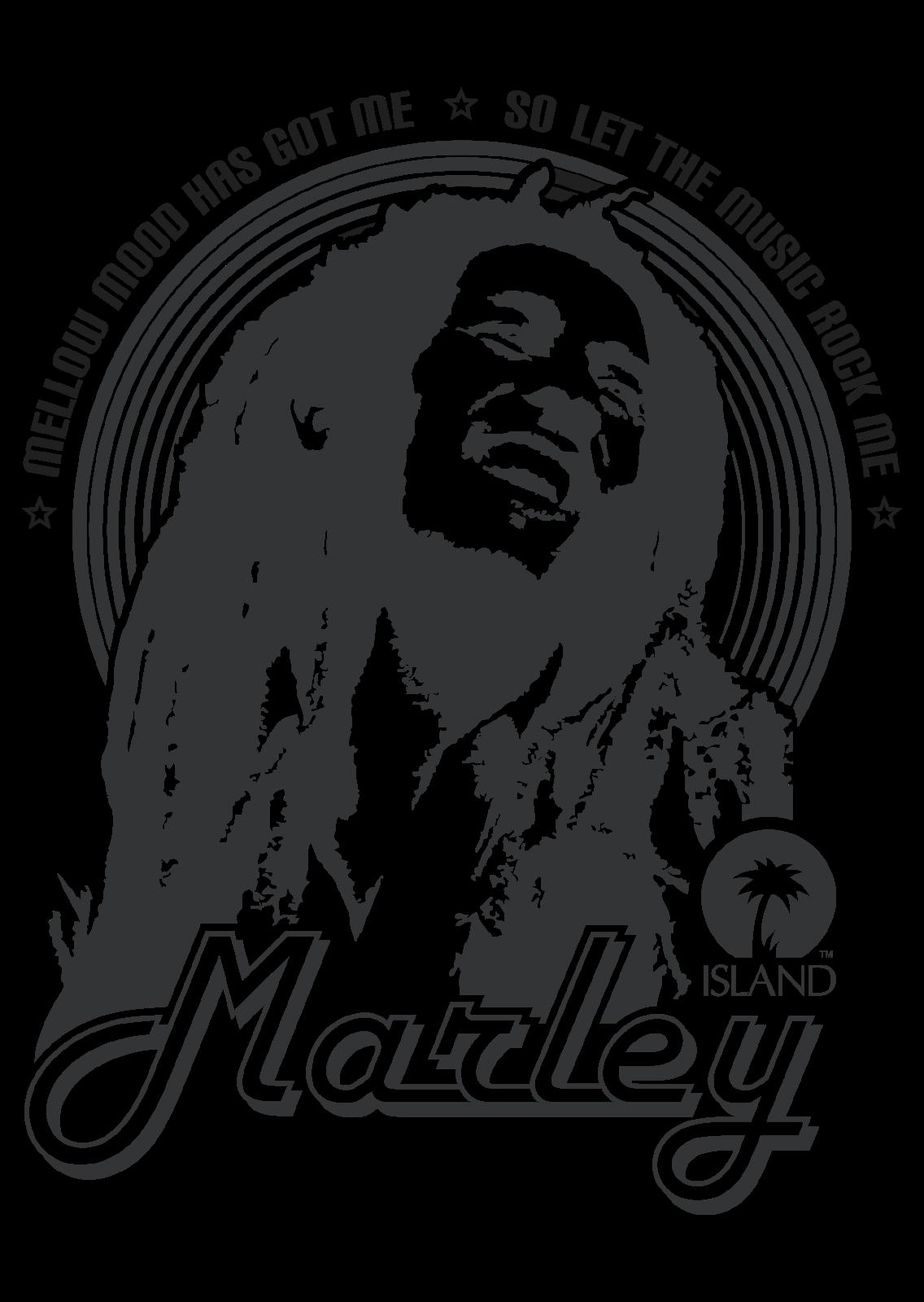 Bob Marley The Wailers Rasta Revolution
