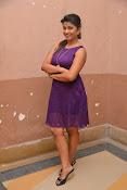 Geethanjali glam pics at SSD audio-thumbnail-13