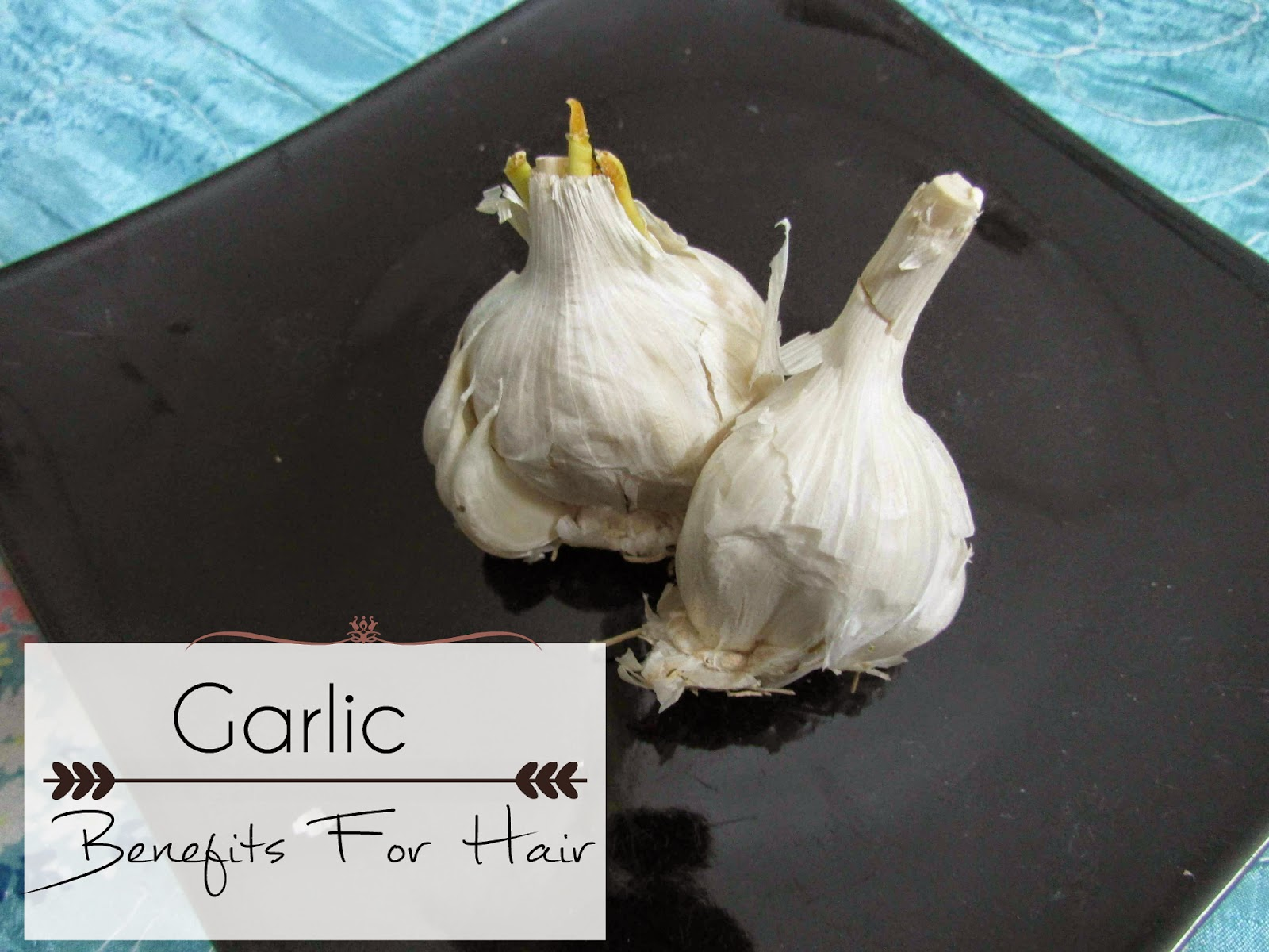 garlic hair benefits, garlic oil, garlic oil for dandruff, garlic oil for hair growth, Home remedies for dandruff, home remedies for itchy scalp, home-remedies, home remedies, scalp infection, garlic, garlic oil, garlic oil for dandruff, garlic oil for hair growth, Home remedies for dandruff, home remedies for itchy scalp, home-remedies, how to treat dandruff at home, itchy scalp,