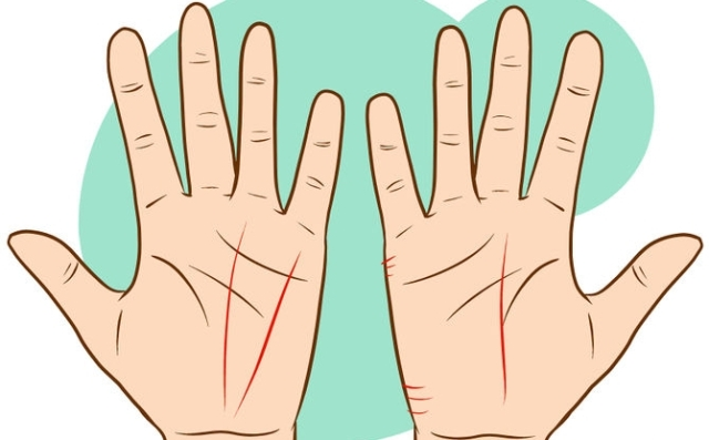 what is palm reading techniques