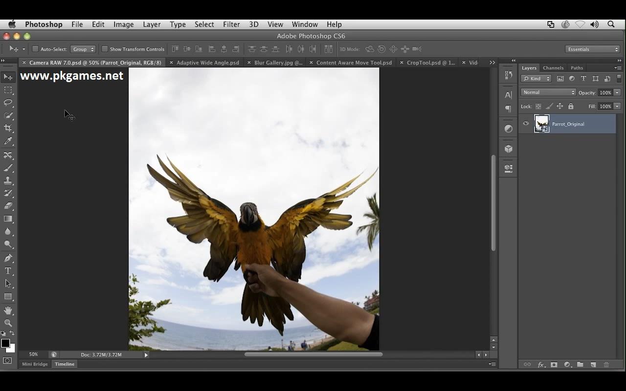 adobe photoshop cs6 portable highly compressed