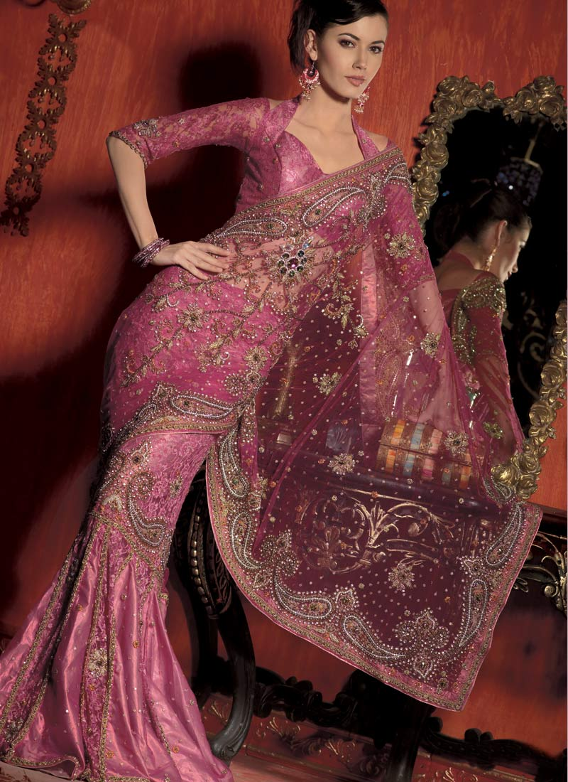 Saree Designs Latest Collection Of Indian Net Designer