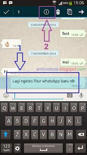 WhastApp Kini Bisa Melihat Pesan Sudah Dibaca atau Belum