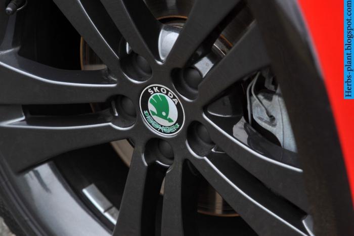Skoda fabia car 2013 tyres/wheels - صور اطارات سيارة سكودا فابيا 2013