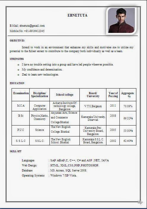 Resume For Bsc Students