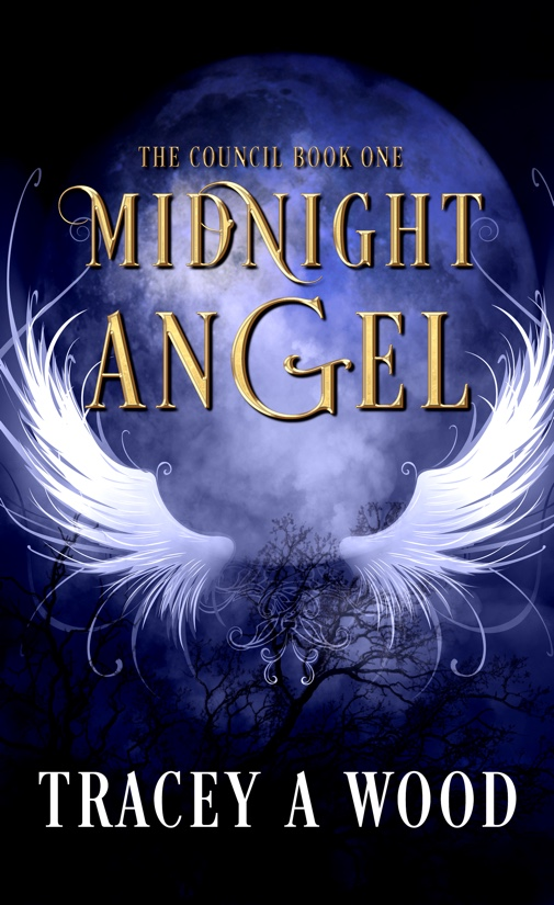 Midnight Angel by Tracey A Wood