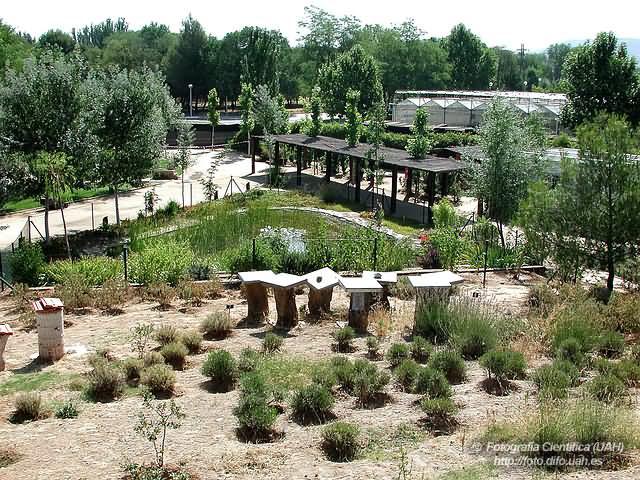 Cidaj for Jardin botanico cursos