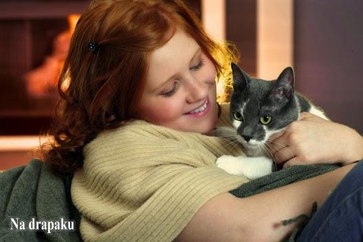 Koty pieszczochy i koty niedotykalskie