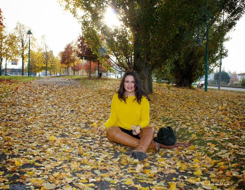 La caída de las hojas, mirada otoño