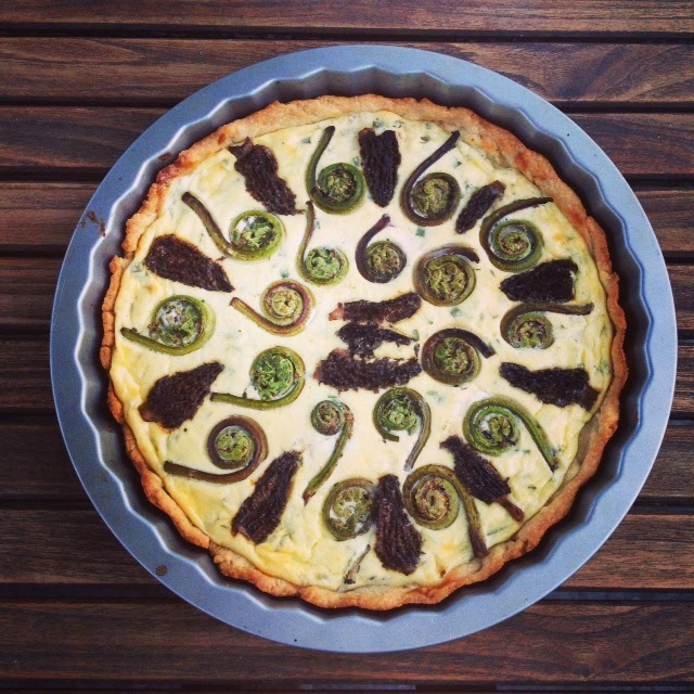 Morel and Fiddlehead Fern Tart