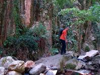Arribant al Clot de l'Infern on les altes parets granítiques estrenyen el nostre pas