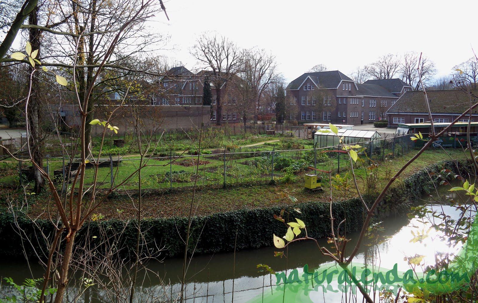 Tapijntuin en Maastricht