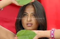 Hot, actress, anushka, navel, show