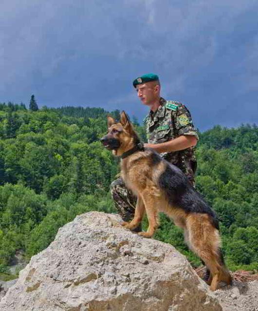 Фото Укринформ: пограничник с овчаркой