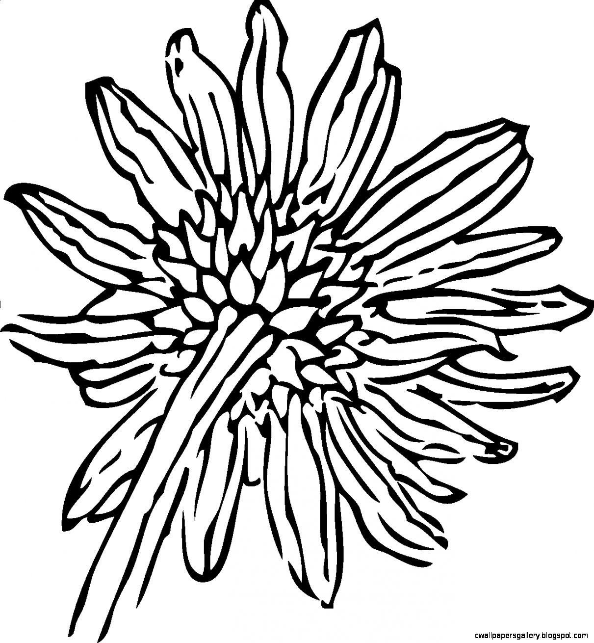 Black And White Sunflower Clipart | Wallpapers Gallery for Clipart Sunflower Black And White  155sfw