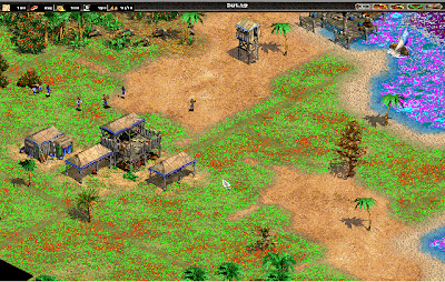 age of empires, renk sorun age of empires