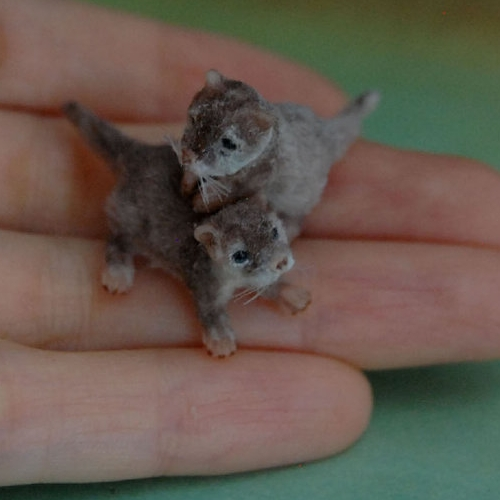 16-Baby-Otters-ReveMiniatures-Miniature-Animal-Sculptures-that-fit-on-your-Hand-www-designstack-co