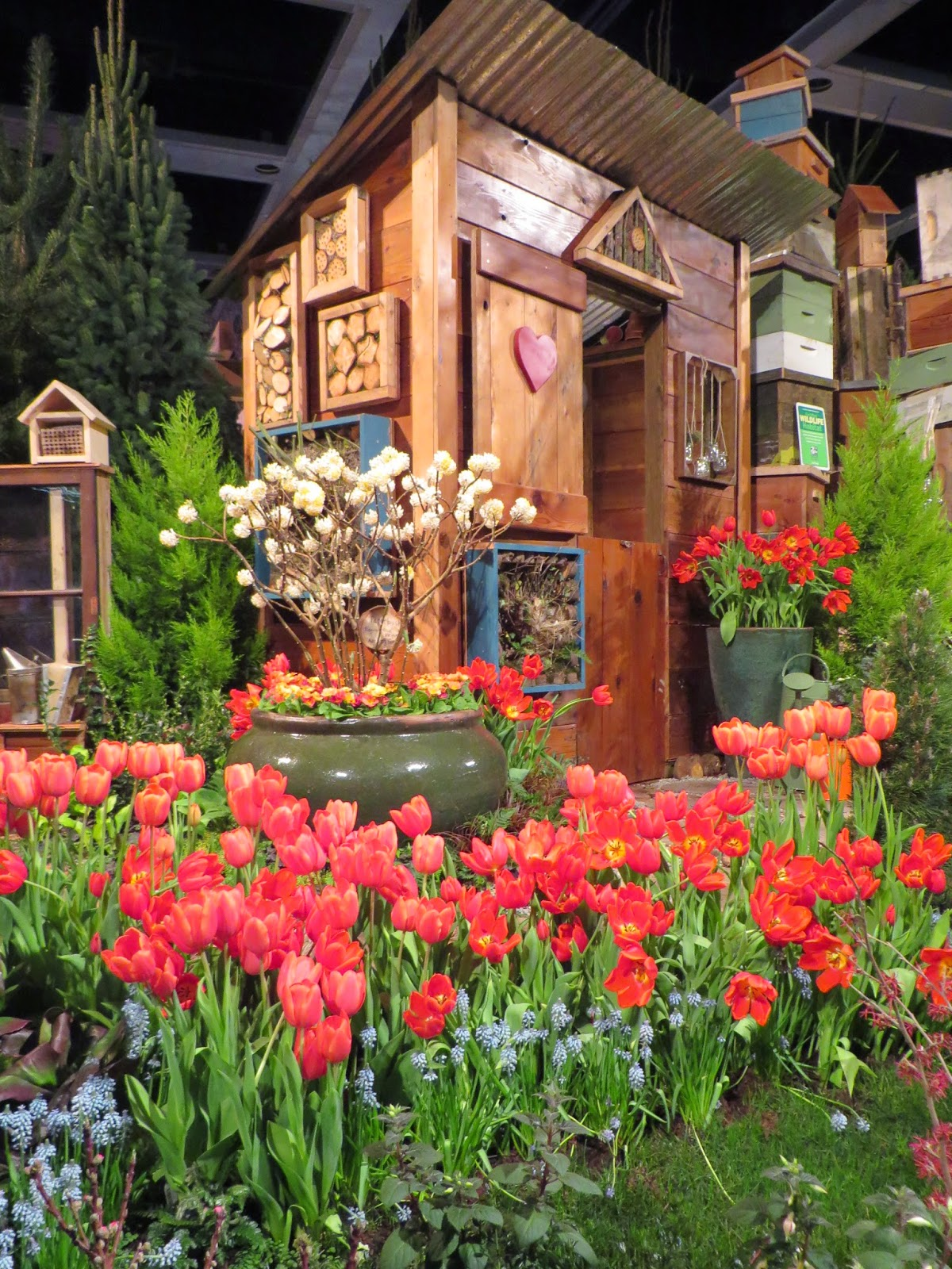 the northwest flower and garden show seattle - Northwest Flower And Garden Show