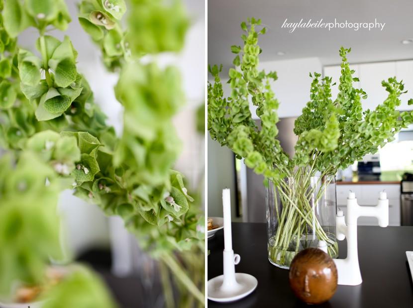 plant details photo