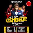 D Chronicles Of Ushebebe