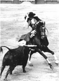 Alvaro Domeq Romero com Opus 72