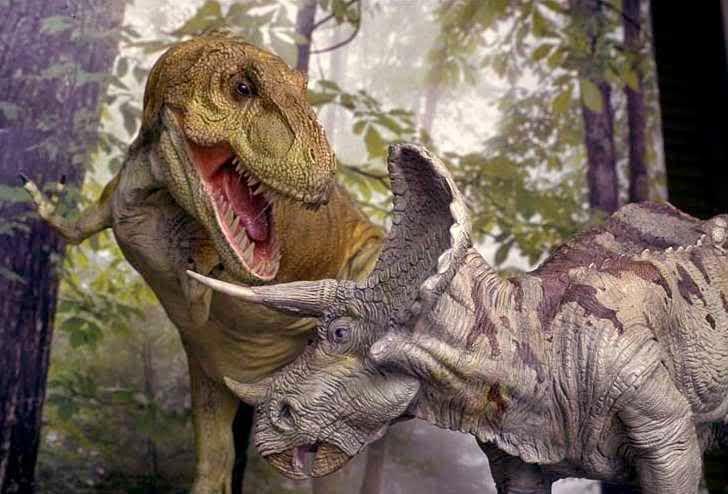 Интересное: смотреть on-line мультфильм динозавр и картинки аниме наруто ки