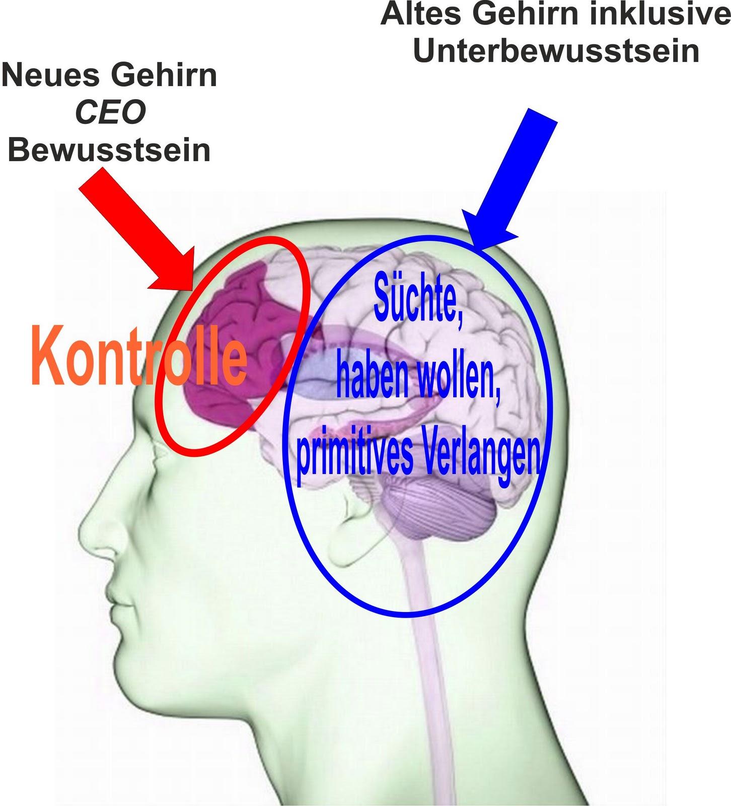Eggetsberger-Info, Blogger, Blog: 01/01/2012 - 02/01/2012