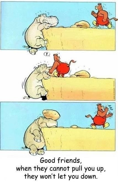 a good friend when they cannot pull you up they won't let you down, comic, funny pictures, funny