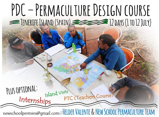 PDC course July and Summer Permaculture Intensive Internship program
