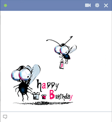 Two Flies Birthday Icon
