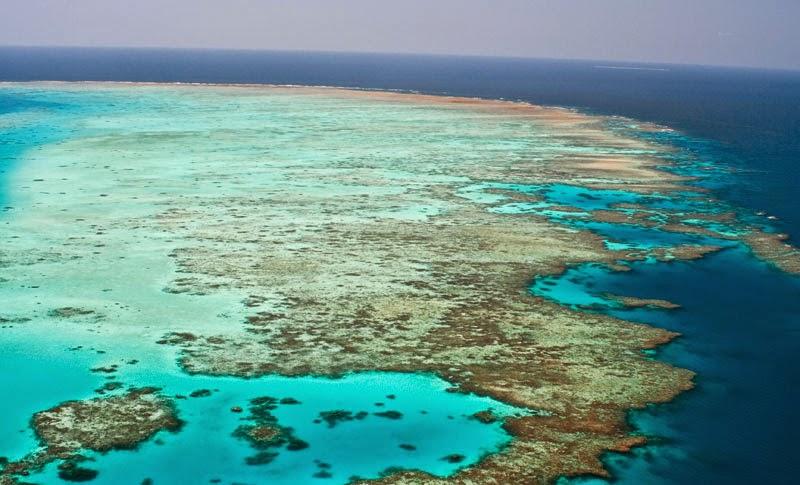 La Gran Barrera de Coral (VIDEO)