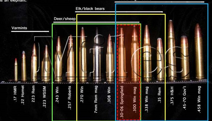 Galerry size chart bullets