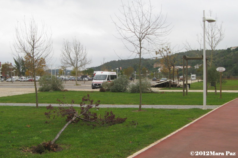 Silves park after the tornado