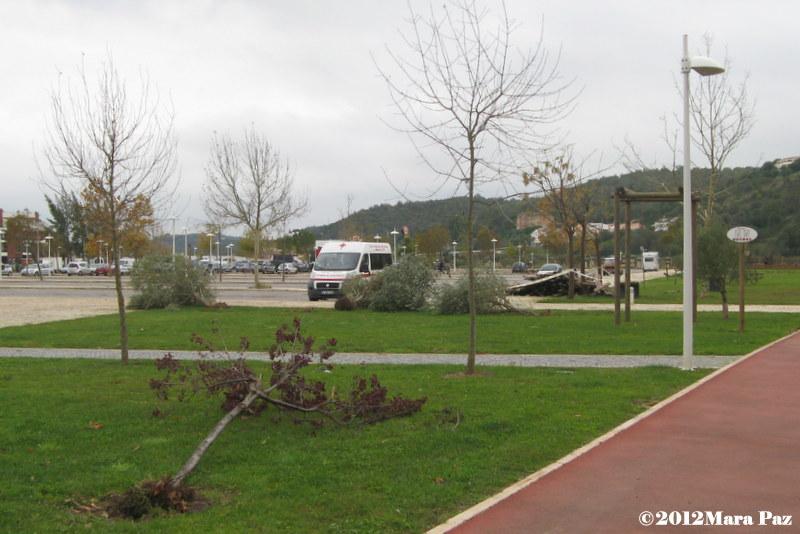 Silves park after the tornado