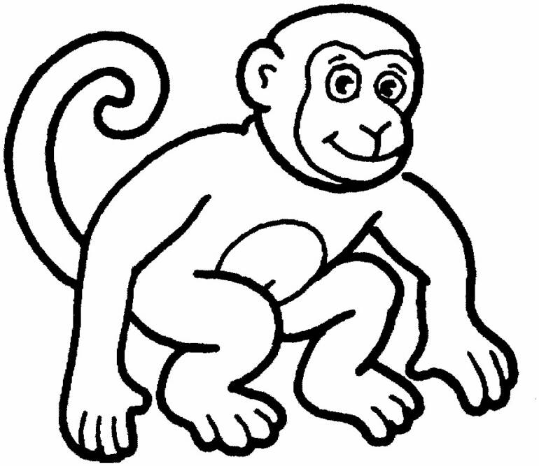 Monkey head outline cake ideas and designs for Free zoo animal coloring pages