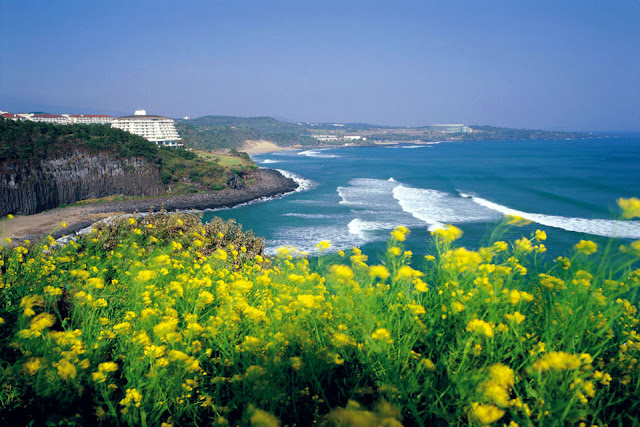 Beautiful Jeju island