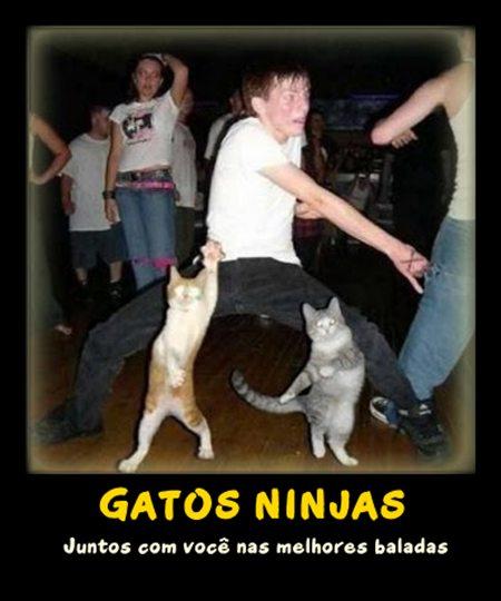 Desmotivacionais,Humor,OGatoNinja.blogspot.com