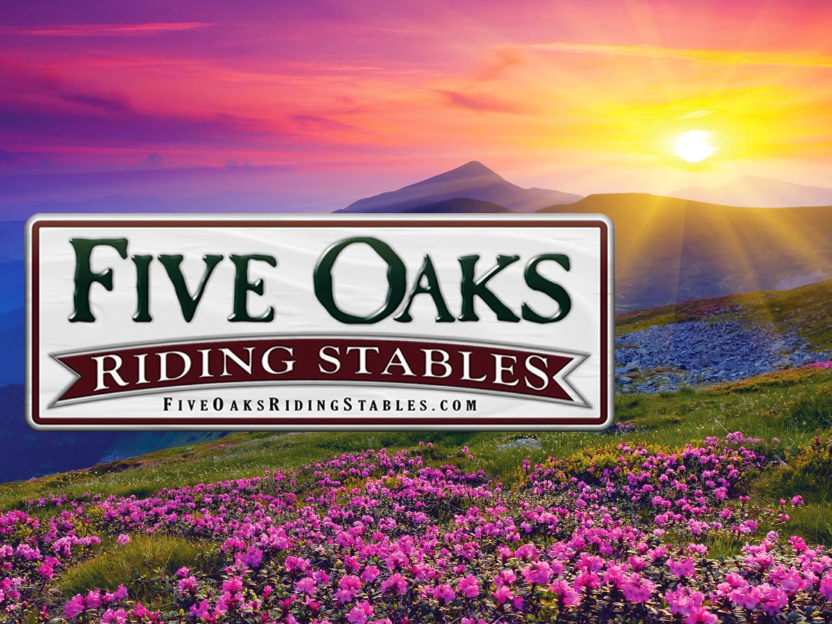 Five Oaks Riding Stables Horseback Riding