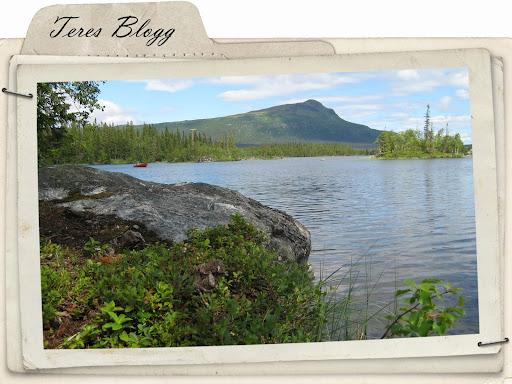Teres blogg