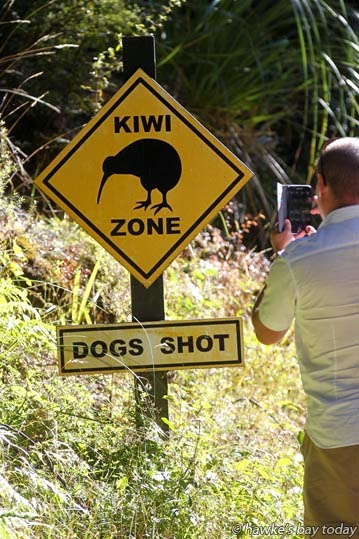 """Sign on the road in - release of the newly-named """"Tanekaha"""" (strong man) the 200th kiwi released at Maungataniwha Native Forest, Northern Hawke's Bay, a Tasti Facebook promotion themed around Kiwis who have """"flown the nest."""" Tanekaha was named by Lynda Holswich, Auckland, the competition winner. Her son Aaron Holswich, now living in Perth, Australia, was a surprise guest. photograph"""
