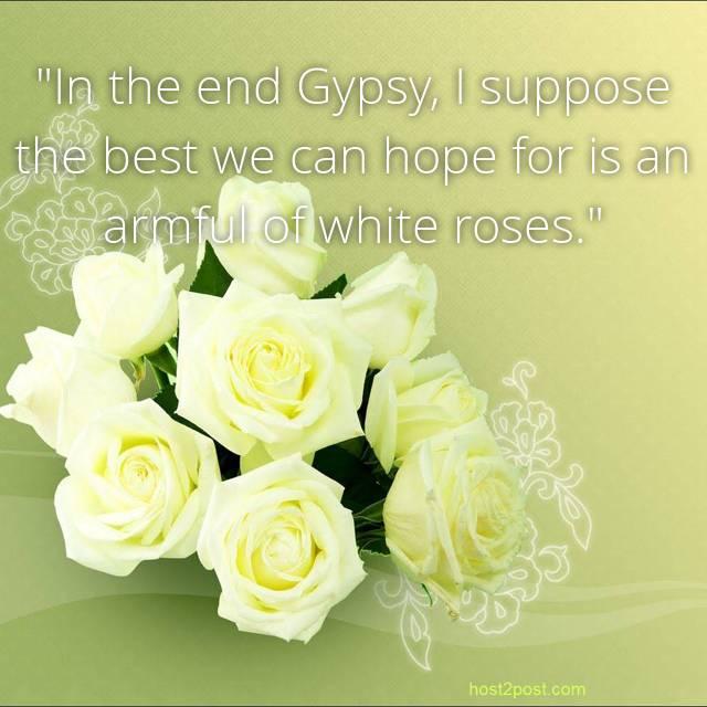 roses meacham leila