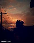 Minhas Fotografias