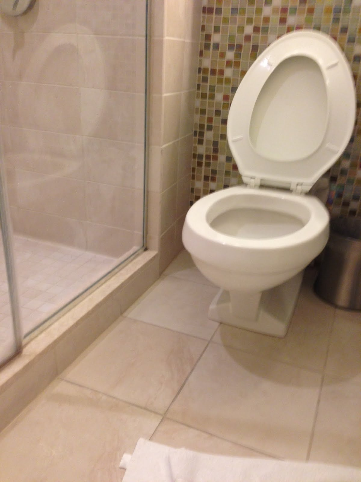Enjoying the View.. One Day at a time: Take on the Hyatt toilet for ...