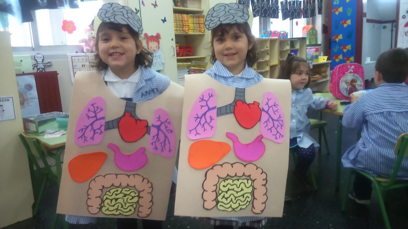 Infantil 5 años - C.E.I.P. Sagrada Familia (A Coruña): Los órganos ...